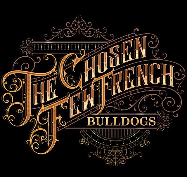 The Chosen Few French Bulldogs
